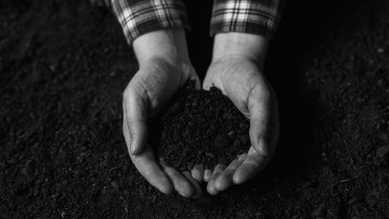 Soil fertility analysis as agricultural activity